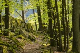 Regionen im Odenwald