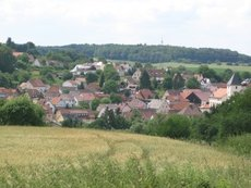 Sulzbach: Assulzerhof-Weg