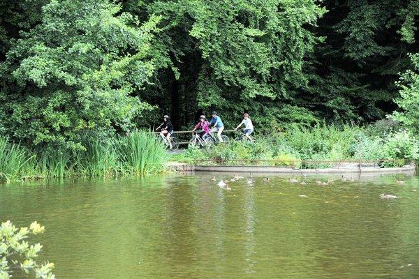 Der 3-Täler-Radweg führt auch am Roberner See vorbei!