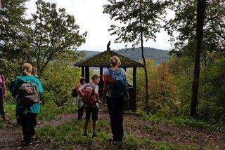 Wanderer auf der Necksteig-Etappe von Heidelberg nach Neckargemünd