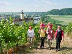 Gundelsheim: Götz-Tour-Wanderung