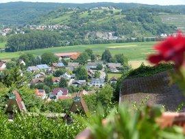 Blick von Burg Guttenberg