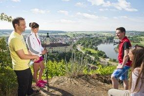 Wanderung auf dem Neckarsteig nach Gundelsheim