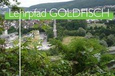 Obrigheim: Lehrpfad GOLDFISCH