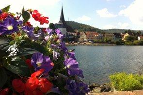 Blick vom Neckarufer auf Neckargemünd