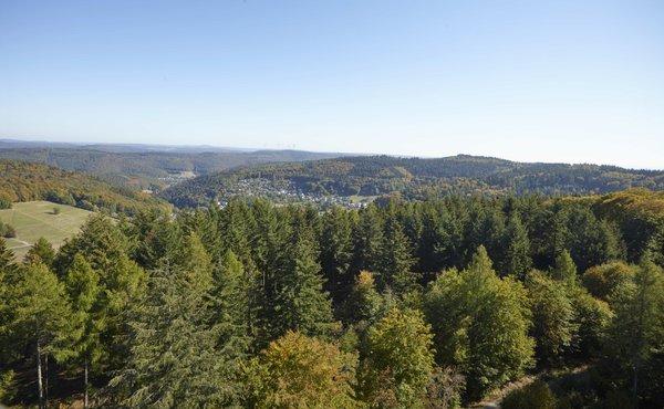 Von keinem anderen Turm des Odenwaldes hat der Besucher einen umfassenderen und schöneren Ausblick.