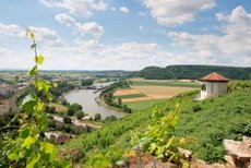 Neckarzimmern: Burgentour mit Adlerblick