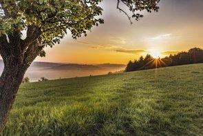 Romantischer Sonnenaufgang bei Neckarkatzenbach