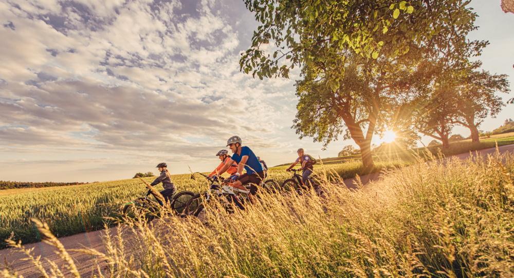Erleben Sie die Schönheit des Odenwaldes bei einer Radtour, beispielsweise auf dem Odenwald-Madonnen-Radweg. Auf gut ausgeschilderten Radwegen können Sie bei uns auf Entdeckungstour gehen und unsere traumhafte Landschaft genießen.