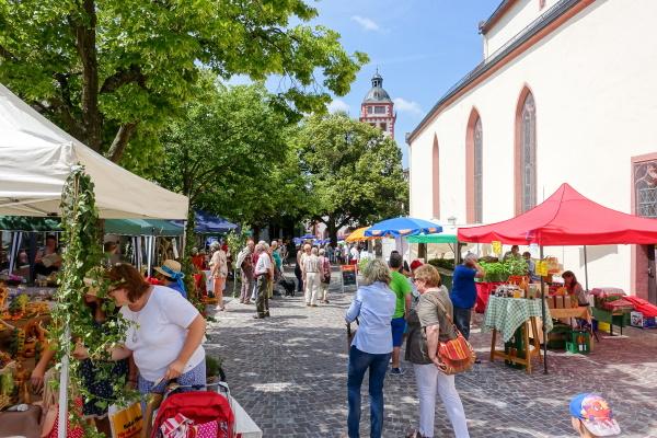 Monatliche Erlebnismärkte laden zu spannenden Entdeckungsreisen in die Mosbacher Altstadt ein