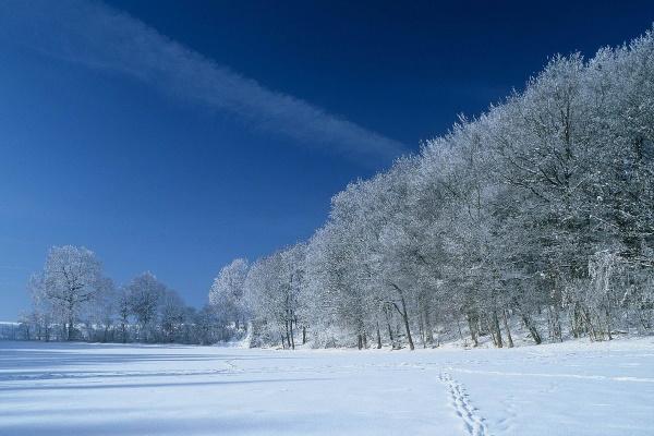 Winterlandschaft bei Schefflenz