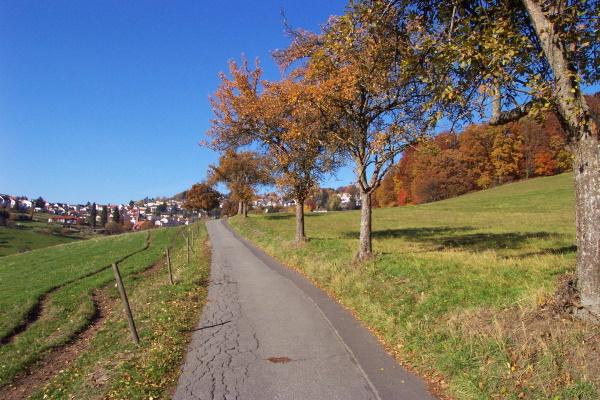 Wilhelmsfeld ist idealer Ausgangspunkt für Wandertouren