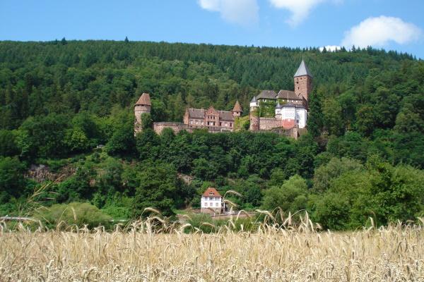 Blick auf Schloss Zwingenberg - in unmittelbarer Nähe befindet sich die Wolfsschlucht