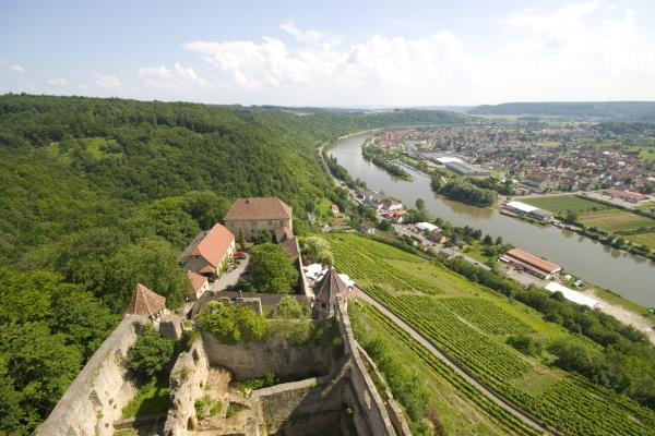 Blick von Burg Hornberg ins Neckartal