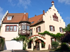 Mosbacher Schloss