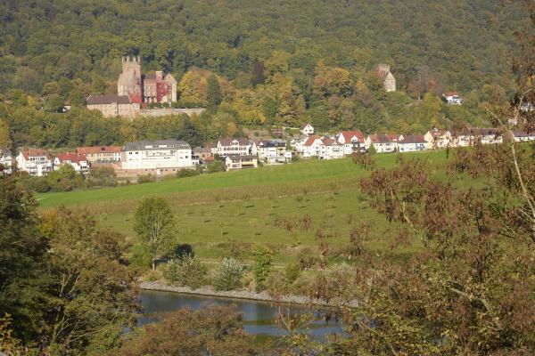 Blick auf die Vierburgenstadt Neckarsteinach