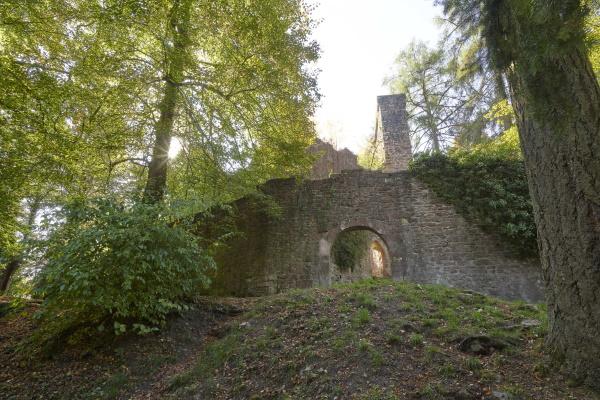 Das Markenzeichen der Ruine ist die mächtige und heute noch begehbare Schildmauer mit einer Höhe von 21 Metern