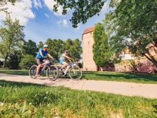 Odenwald-Madonnen-Radweg