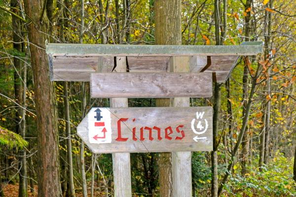 Römer und Limes